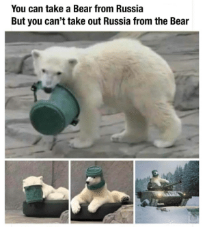 Bear, Russia, and Can: You can take a Bear from Russia  But you can't take out Russia from the Bear Russia bear 🇷🇺