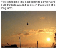 """<p>I still think via /r/memes <a href=""""http://ift.tt/2oHJcQI"""">http://ift.tt/2oHJcQI</a></p>: You can tell me this is a bird flying all you want  l still think it's a rabbit on skis in the middle of a  long jump <p>I still think via /r/memes <a href=""""http://ift.tt/2oHJcQI"""">http://ift.tt/2oHJcQI</a></p>"""