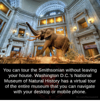 museum of natural history: You can tour the Smithsonian without leaving  your house. Washington D.C.'s National  Museum of Natural History has a virtual tour  of the entire museum that you can navigate  with your desktop or mobile phone.  fb.com/facts Weird