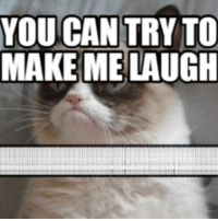 make me laugh: YOU CAN  TRY TO  MAKE ME LAUGH