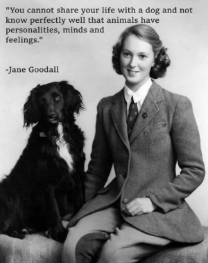 "Animals, Life, and Memes: ""You cannot share your life with a dog and not  know perfectly well that animals have  personalities, minds and  feelings.""  -Jane Goodall"
