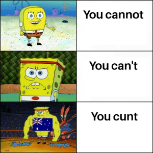 Dank, Memes, and Target: You cannot  You can't  You cunt Its just a compliment I swear by LinkinShriya MORE MEMES