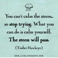 You can't calm the storm  so stop trying.  What you  can do is calm yourself  The storm will Pass.  (Timber Hawkeye)  WWW.LIVELIFE HAPPY COM Hit Like if you agree - www.LiveLifeHappy.com