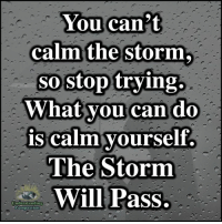 You can't  calm the storm,  sostop trying.  What vou can do  is calm vourself  The Storm  Will Pass.  Understanding  Compassion Understanding Compassion Group ❤️  Be Patient In The Storm And Focus On The Sunshine After ❤️