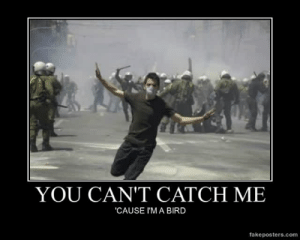 very-demotivational:  You Can't Catch Me - Demotivational Poster: YOU CAN'T CATCH ME  CAUSE I'M A BIRD  fakeposters.com very-demotivational:  You Can't Catch Me - Demotivational Poster
