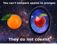 "Reddit, Com, and Source: You can't compare apples to oranges  They do not coexist <p>[<a href=""https://www.reddit.com/r/surrealmemes/comments/94hwd7/fruit_cant_be_compared/?utm_source=ifttt"">Src</a>]</p>"