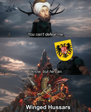 Memes, SoundCloud, and True: You can't defeat me.  Iknow, but,he can.  Winged Hussars feniczoroark:  30-minute-memes:  Charge!  @randomnightlord @randomnightlord YOU KNOW WHAT TO DO  SIR YES SIR