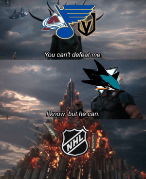 National Hockey League (NHL), Chat, and Blues: You can't defeat me  /know, but he'can F in the chat for the blues