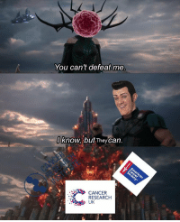 Saw this on r/dankmemes soon after his passing, and as far as I know it hasnt been posted here. It deserves to be. Rest easy Stefan.: You can't defeat me  know, but Theycan.  CANCER  RESEARCH  UK Saw this on r/dankmemes soon after his passing, and as far as I know it hasnt been posted here. It deserves to be. Rest easy Stefan.