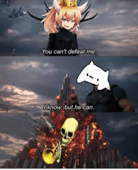 The skeleton wars stop for no meme.: You can't defeat me  l know. but he can The skeleton wars stop for no meme.