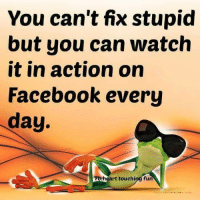 Dank, Facebook, and Heart: You can't fix stupid  but you can watch  it in action on  Facebook every  day  Fo heart touching fun #jussayin