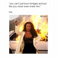 "Memes, Never, and 🤖: ""you can't just burn bridges and act  like you never even knew him.""  me:  @bustle 💁‍♀️💁‍♀️💁‍♀️"