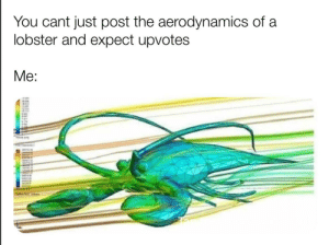 Dank, Memes, and Target: You cant just post the aerodynamics of a  lobster and expect upvotes Upserve by Azxyc MORE MEMES