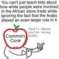 Oh common core... such a beutiful indoctrination tool: You can't just teach kids about  how white people were involved  in the African slave trade while  ignoring the fact that the Arabs  played an even larger role in it  that's where  you re wrong  Common  kiddo  Core Oh common core... such a beutiful indoctrination tool