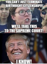 Memes, 🤖, and Birthright: YOU CANT JUST TERMINATE  BIRTHRIGHT CITIZENSHIP!!  WELL TAKETHIS  TO THESUPREME COURT!  I KNOW! 🤣