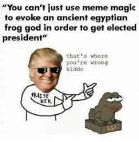 """Memes, Egyptian, and 🤖: """"You can't just use meme magic  to evoke an ancient egyptian  frog god in order to get elected  president""""  that's where  you're wrong  kiddo  PRAISE  KEK"""