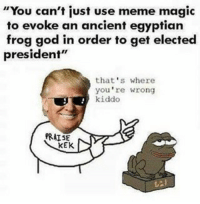 """God, Meme, and Memes: """"You can't just use meme magic  to evoke an ancient egyptian  frog god in order to get elected  president""""  that's where  you're wrong  kiddo  PRAISE  KEK Nuts"""