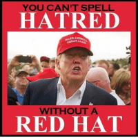25 Brutally Hilarious Memes Proving Trump Is A Moron: http://bit.ly/2FKWcfX: YOU CAN'T SPELL  HATRED  GREAT AGA  WITHOUT A  RED HAT 25 Brutally Hilarious Memes Proving Trump Is A Moron: http://bit.ly/2FKWcfX