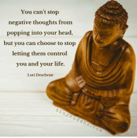 Tiny Buddha: You can't stop  negative thoughts from  popping into your head  but you can choose to stop  letting them control  you and your life.  Lori Deschene Tiny Buddha