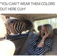 """Memes, The Hood, and Http: """"YOU CAN'T WEAR THEM COLORS  OUT HERE CUH"""" The hood via /r/memes http://bit.ly/2HdFJG4"""