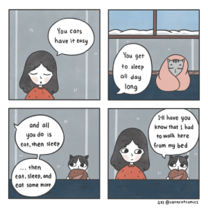 [OC] Easy Life: You cats  have it easy  You get  to sleep  all day  long  and all  you do is  eat, then sleep  I-ll have you  know that I had  to walk here  from my bed  . then  eat, sleep, and  eat some more  4TI @catncatcomics [OC] Easy Life