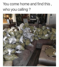 @stonerjoke let's go😂 Who y'all calling?👇: You come home and find this  who you calling? @stonerjoke let's go😂 Who y'all calling?👇