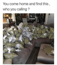 Who you calling?! 🤔😂 WSHH: You come home and find this  who you calling? Who you calling?! 🤔😂 WSHH