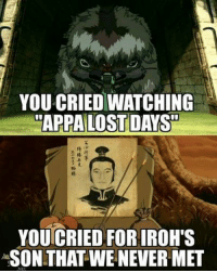 Animals, Crying, and Memes: YOU CRIED WATCHING  APPA LOST DAYS  YOUTCRIED FOR IROHTS  SON THAT WE NEVER MET :'(  ~ Anime & Cartoon Universe