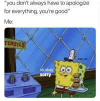 "Memes, Sorry, and Good: ""you don't always have to apologize  for everything, you're good""  Me:  TENSI LSI  @will_ent  óh okay  sorry Send to this person"