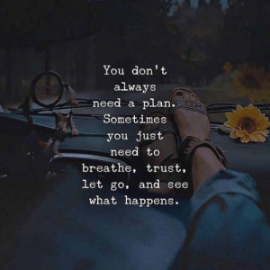 You, Need to Breathe, and What: You don't  always  need a plan.  Sometimes  you just  need to  breathe, trust,  let go, and see  what happens.
