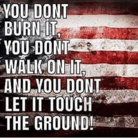 Memes, Respect, and Military: YOU DONT  BURN IT  AND VOU DONT  LET IT TOUCH  THE GROUND! Respect 🇺🇸🇺🇸🇺🇸 Sa_Alphaco☑️ SAway respect patriotism honor duty courage americanpride thankful military
