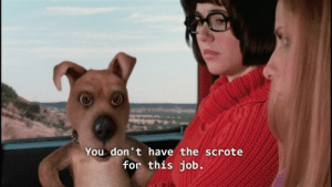 """Tumblr, Blog, and Home: You don't have the scrote  for this job. rockleedropkickinggaaraintheface: i want scrappy-doo to enter my home and say""""scrote,"""" killing me instantly"""
