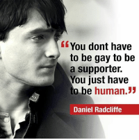 Daniel Radcliffe, Memes, and Being Human: You dont have  to be gay to be  a supporter.  You just have  o be  human.  33  Daniel Radcliffe where are our followers from? Comment below -Jonah