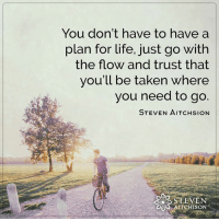 <3: You don't have to have a  plan for life, just go with  the flow and trust that  you'll be taken where  you need to go.  STEVEN AITCHsioN  STEVEN  AITCHISON <3