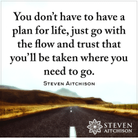 Just Go With The Flow: You don't have to have a  plan for life, just go with  the flow and trust that  you'll be taken where you  need to go.  STEVEN AITCHISON  AITCHISON