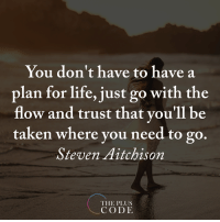 <3 The Plus Code  .: You don't have to have a  plan for life, just go with the  flow and trust that you'll be  taken where you need to go.  Steven Aitchison  THE PLUS  CODE <3 The Plus Code  .