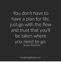 Just Go With The Flow: You don't have to  have a plan for life,  just go with the flow  and trust that you'll  be taken where  you need to go  Steven Aitchison  Awakening People.com