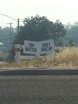 Hopefully no one reads this straight across from left to right like I did: YOU DONT Hopefully no one reads this straight across from left to right like I did