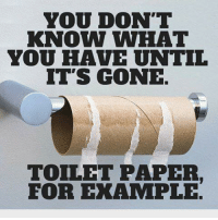 YOU DON'T KNOW WHAT YOU HAVE UNTIL IT'S GONE TOILET PAPER FOR ...