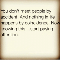 Life, Memes, and Coincidence: You don't meet people by  accident. And nothing in life  happens by coincidence. Now  knowing this  start paying  attention. 💯🆓🎮 Im tryna tell you! 👀👌