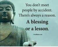 Memes, Buddhism, and Reason: You don't meet  people by accident.  There's always a reason.  A blessing  or a lesson.  e-buddhism com