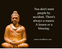 Memes, Buddhism, and Reason: You don't meet  people by  accident. There's  always a reason  A lesson or a  blessing.  www.e-buddhism. com