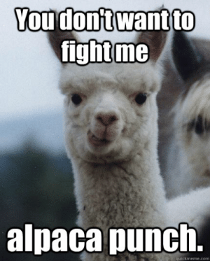 Alpaca Punch
