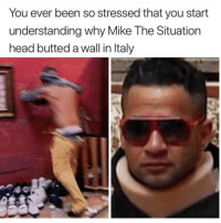 Head, Understanding, and Been: You ever been so stressed that you start  understanding why Mike The Situation  head butted a wall in ltaly
