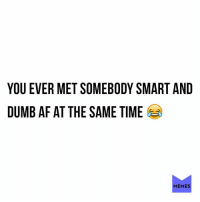 Yeahp: YOU EVER MET SOMEBODY SMART AND  DUMB AF AT THE SAME TIME  MEMES Yeahp