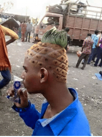 """You ever see Spongebob's house?"" ""Say no more, fam."""