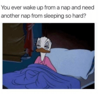 Memes, Time, and All The: You ever wake up from a nap and need  another nap from sleepingso hard? All the time (@friendofbae)