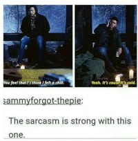 Chill, Memes, and Yeah: You feel that? I think I felt a chill.  Yeah. It's cause it's cold.  sammy forgot-thepie  The sarcasm is strong with this  One - Not Moose