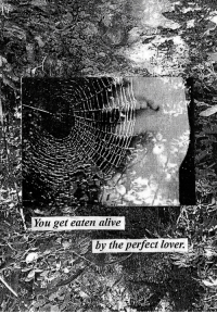 Alive, You, and Eaten Alive: You get eaten alive  by the perfect lover