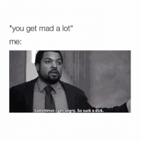 """Dicks, Dick, and Girl Memes: you get mad a lot""""  me  Sometimes I get an  So suck a dick. 😌🙃"""